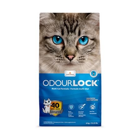 Intersand Odourlock Premium Cat Litter - Petsnpets